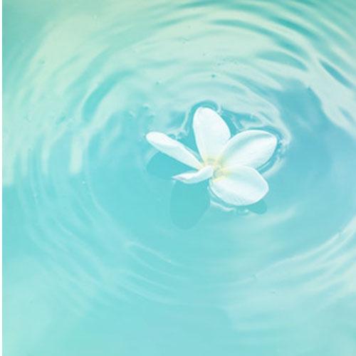 Amortherapy Profumatori concentrati per bucato Essenze dal profumo intenso e duraturo